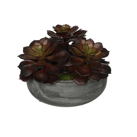 Artificial Burgundy Echeveria Garden in Grey-Washed Bowl Ceramic
