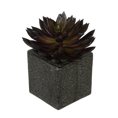 Artificial Pointed Echeveria in Sandy-Texture Cube Ceramic