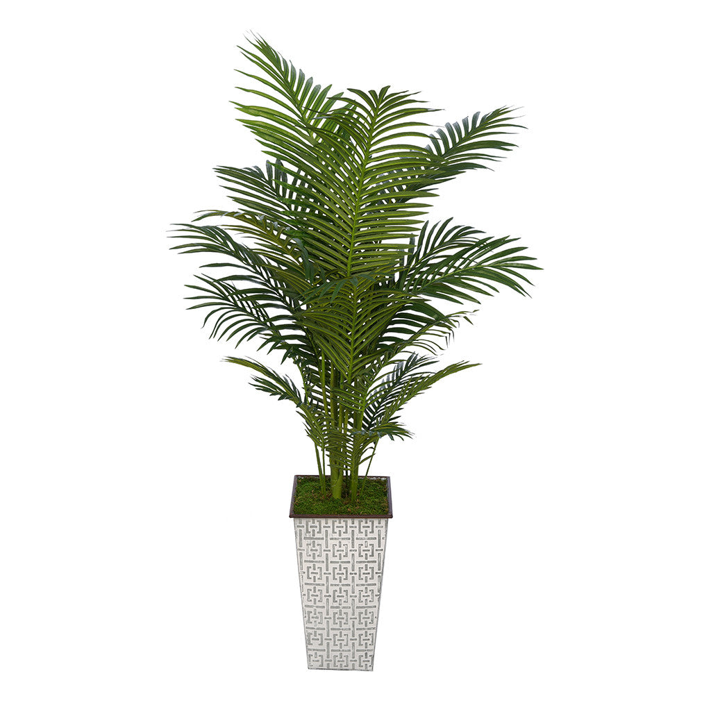 5-foot Areca Palm in Designer Metal House of Silk Flowers®