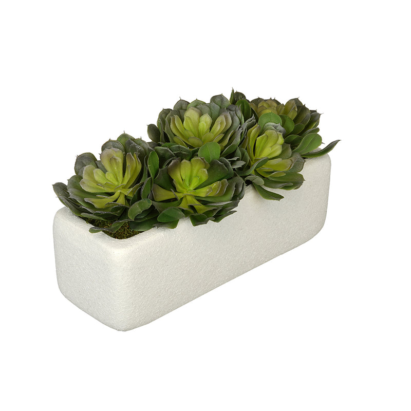 Aeoniums in Sandy-White Rectangle Ceramic Vase House of Silk Flowers®