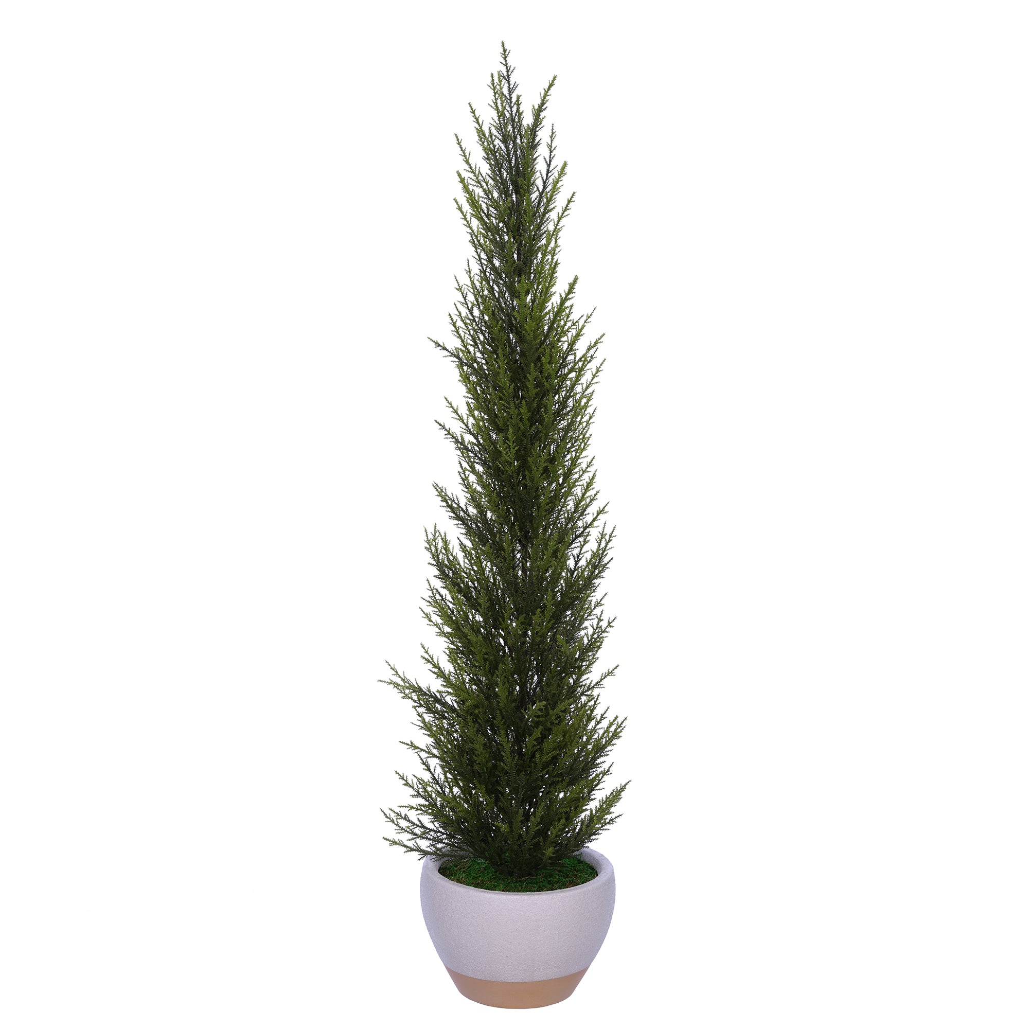 34-inch Cedar Pencil Topiary in Sandy White Ceramic Pot House of Silk Flowers®