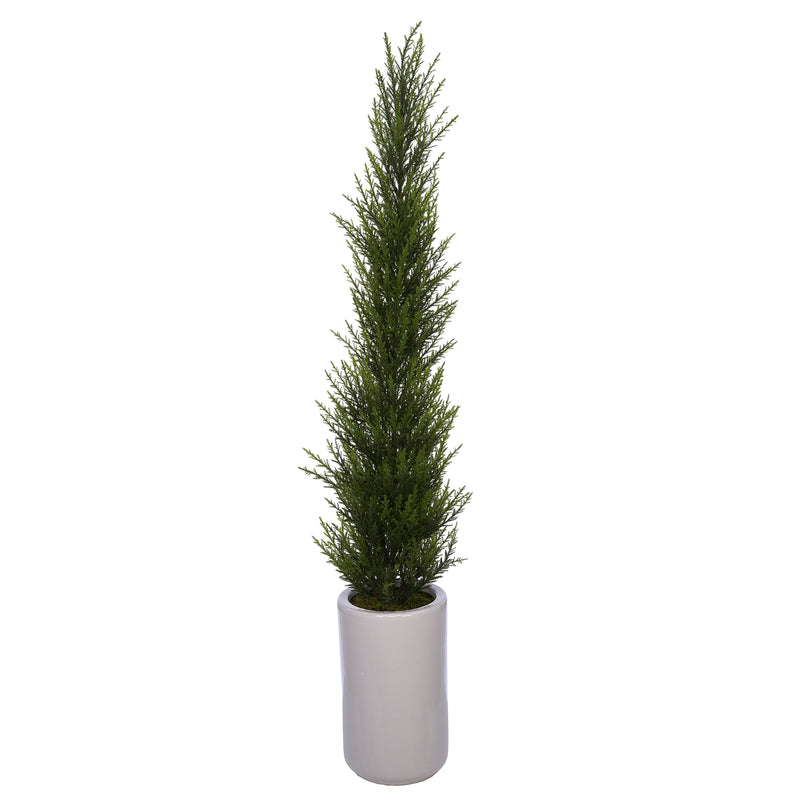 38-Inch Cedar Pencil Topiary in White Cylinder Ceramic Pot House of Silk Flowers®