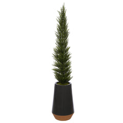 54-Inch Cedar Pencil Topiary in Dark Grey Ceramic Pot House of Silk Flowers®