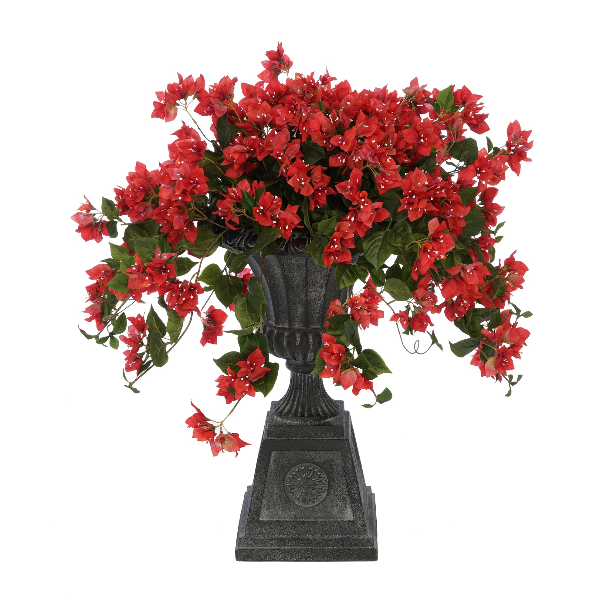 Watermelon Red Bougainvillea Black Footed Tuscan Urn Planter
