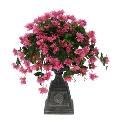 Orchid Pink Bougainvillea Black Footed Tuscan Urn Planter