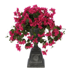 Violet/Fuchsia Bougainvillea Black Footed Tuscan Urn Planter