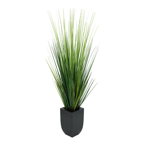 45-inch Grass in Black Tapered Zinc