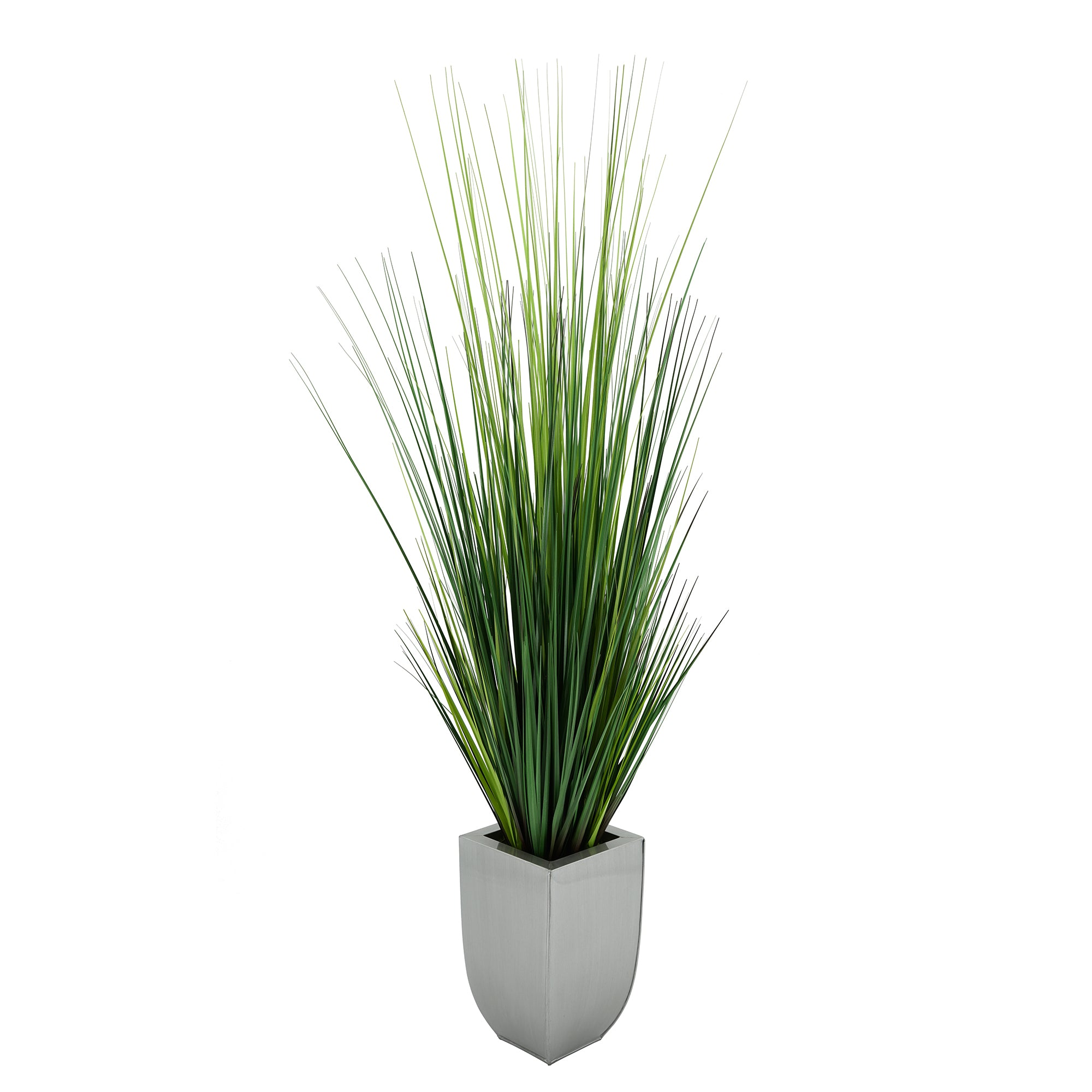 45-inch Grass in Silver Tapered Zinc