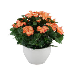 Artificial Orange Hibiscus in White Fishbowl Ceramic Vase