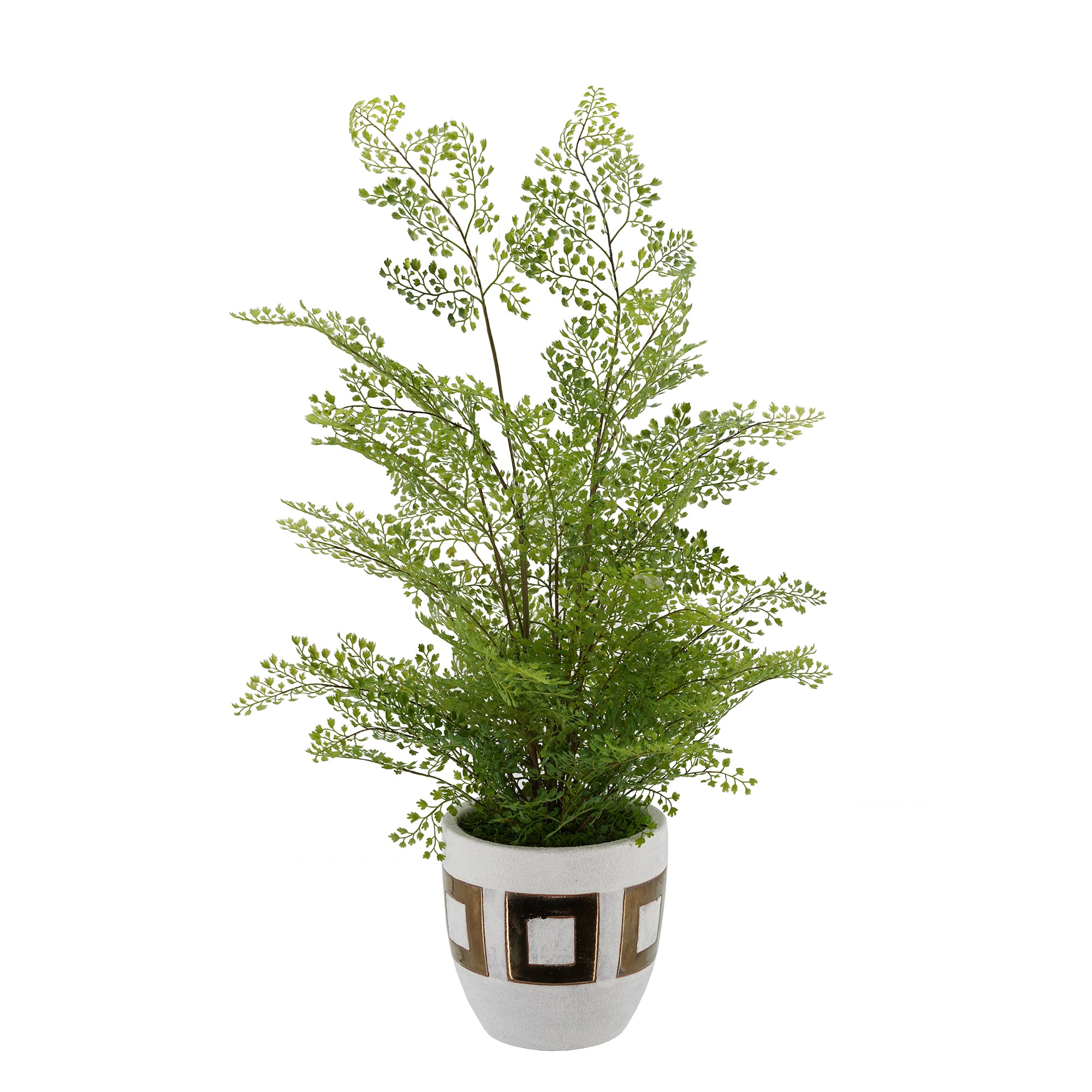 Faux Maidenhair Fern in Gold/White Ceramic