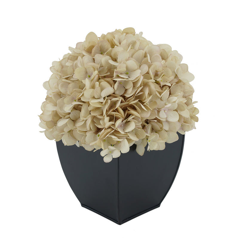 Artificial Antique Ecru Hydrangea in Black Tapered Zinc Cube House of Silk Flowers®