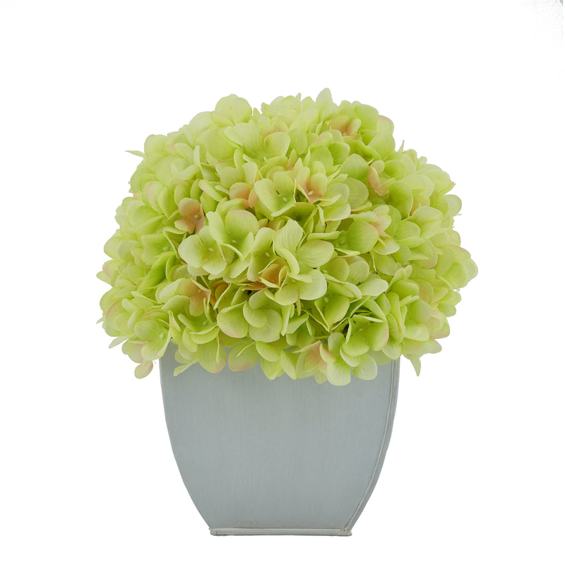Artificial Green Hydrangea in Cream Tapered Zinc Cube