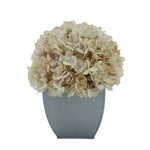 Artificial Hydrangea in Silver Tapered Zinc Cube antique ecru