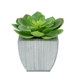 Faux Green Echeveria Succulent in Farmhouse Tapered Zinc Pot