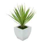 Faux Baby Yucca in Cream Tapered Zinc Pot