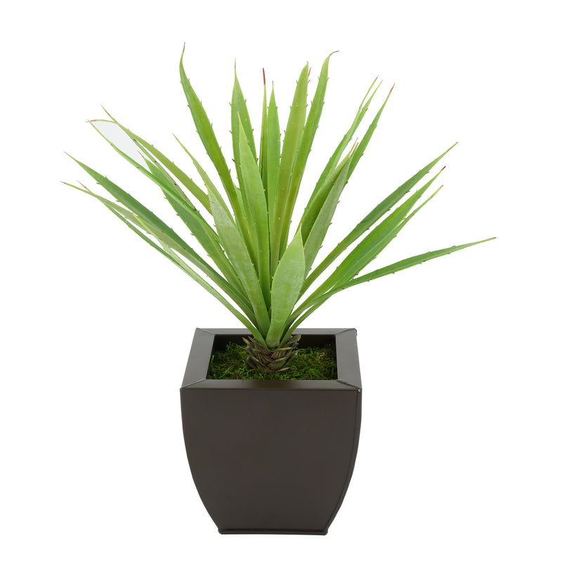 Faux Baby Yucca in Matte Brown Tapered Zinc Pot