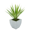 Faux Baby Yucca in Farmhouse Tapered Zinc Pot
