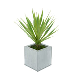 Faux Baby Yucca in Farmhouse Square Zinc Pot