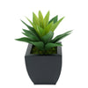 Faux Frosted Light Green Succulent in Black Tapered Zinc Pot