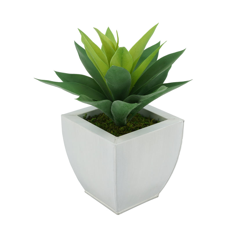 Faux Frosted Light Green Succulent in Cream Tapered Zinc Pot