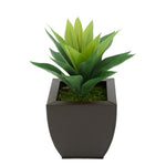 Faux Frosted Light Green Succulent in Matte Brown Tapered Zinc Pot