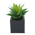 Faux Frosted Light Green Succulent in Black Square Zinc Pot