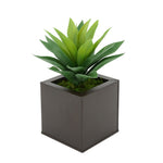 Faux Frosted Light Green Succulent in Matte Brown Square Zinc Pot