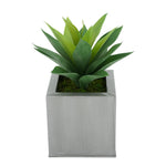 Faux Frosted Light Green Succulent in Silver Square Zinc Pot