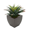Faux Star Succulent in matte brown Tapered Zinc Pot