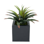 Faux Star Succulent in Black Square Zinc Pot