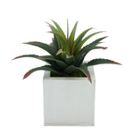Faux Star Succulent in cream  Square Zinc Pot