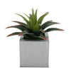 Faux Star Succulent in silver Square Zinc Pot