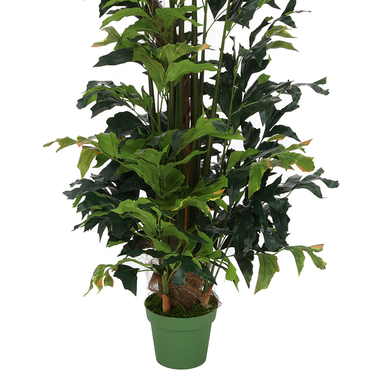 Faux 7ft Fishtail Palm Tree in Round Water Hyacinth Basket