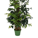 Faux 7ft Fishtail Palm Tree in Tapered Basket
