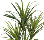 Faux 4ft Dracaena Tree with 4 Heads