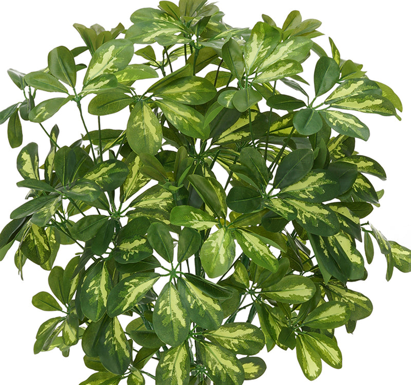 Faux 3ft Variegated Schefflera Topiary House of Silk Flowers®
