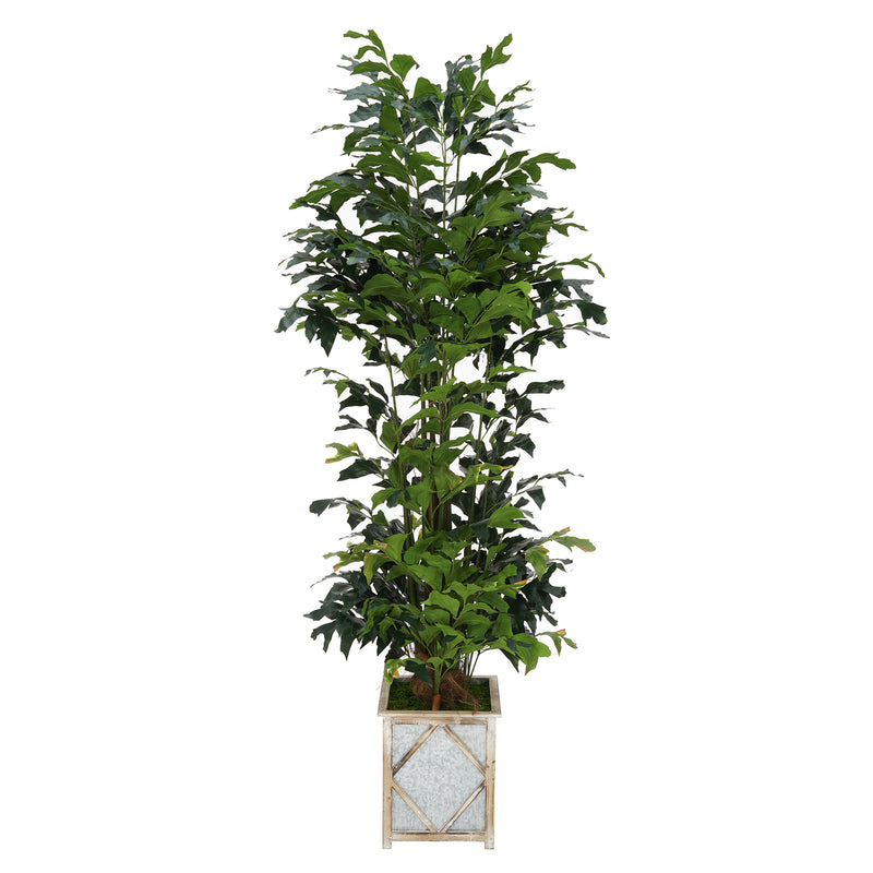Faux 7ft Fishtail Palm Tree in White Diamond Wood/Metal Planter