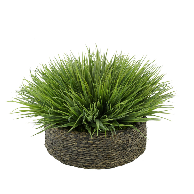 Frosted Farm Grass in Seagrass Tray Basket