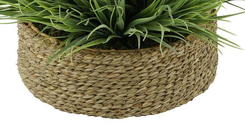 Natural Seagrass Tray Basket
