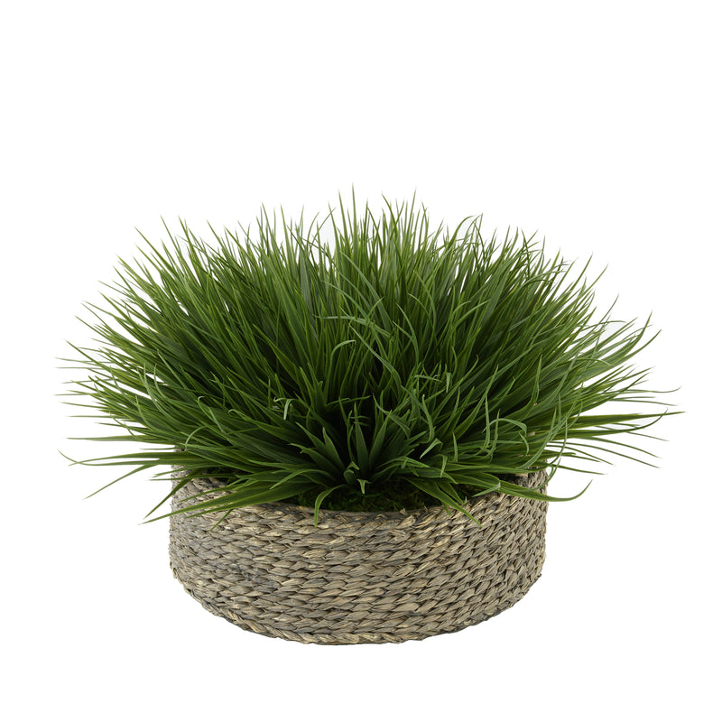 Green Farm Grass in Seagrass Tray Basket