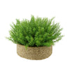 Faux Rosemary Grass in Large Seagrass Tray Basket