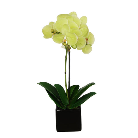 Artificial 18-inch Baby Orchid in Black Cube Ceramic