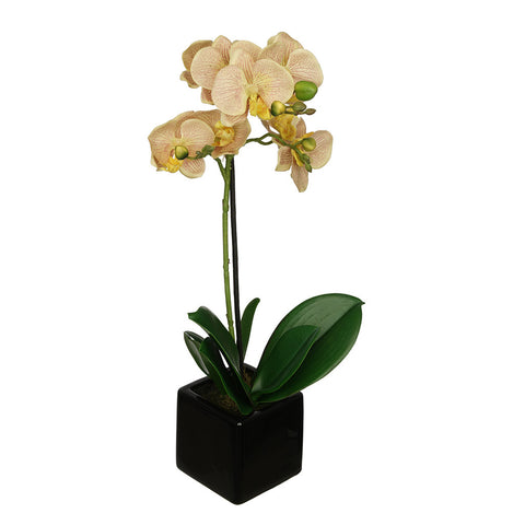 Artificial 18-inch Baby Orchid in Black Cube Ceramic - Pair