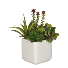 Artificial Succulent Garden in Cube Vase - House of Silk Flowers®  - 3