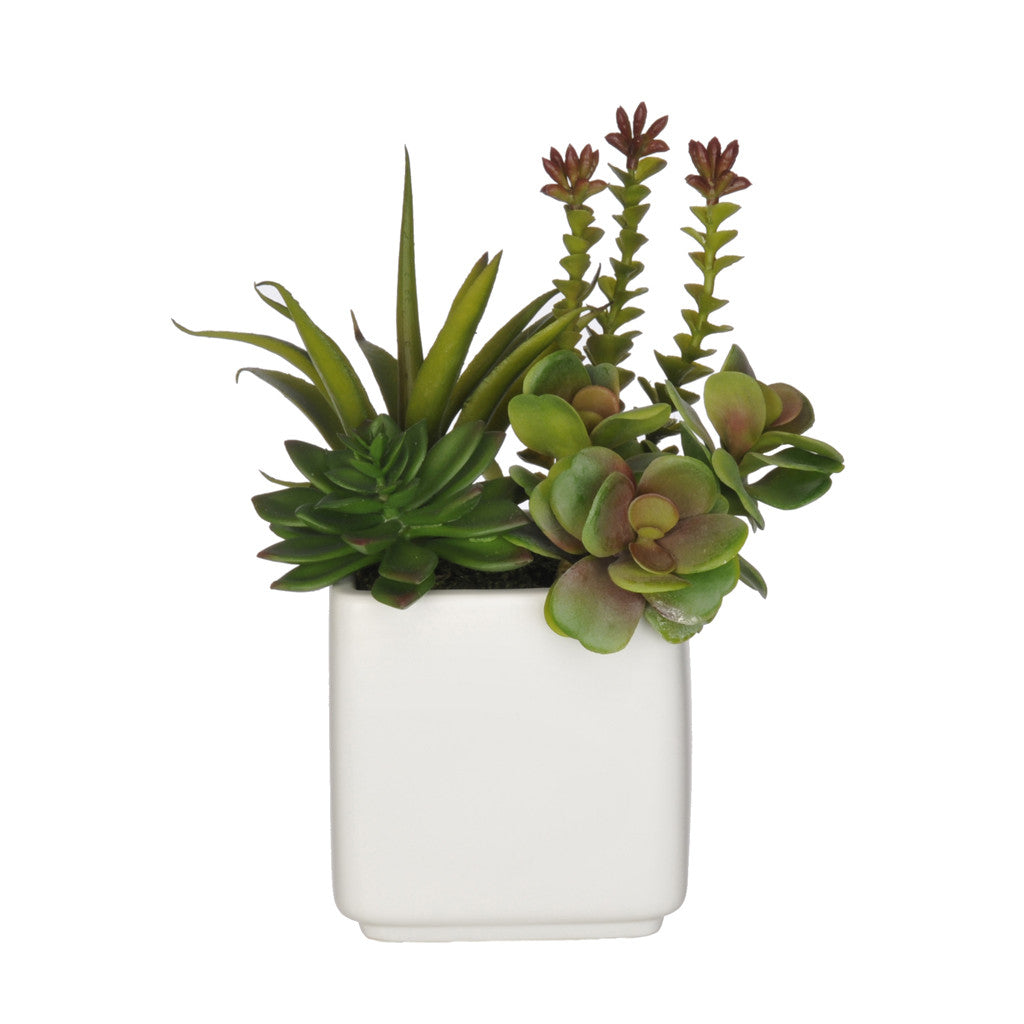 Artificial Succulent Garden in Cube Vase - House of Silk Flowers®  - 4