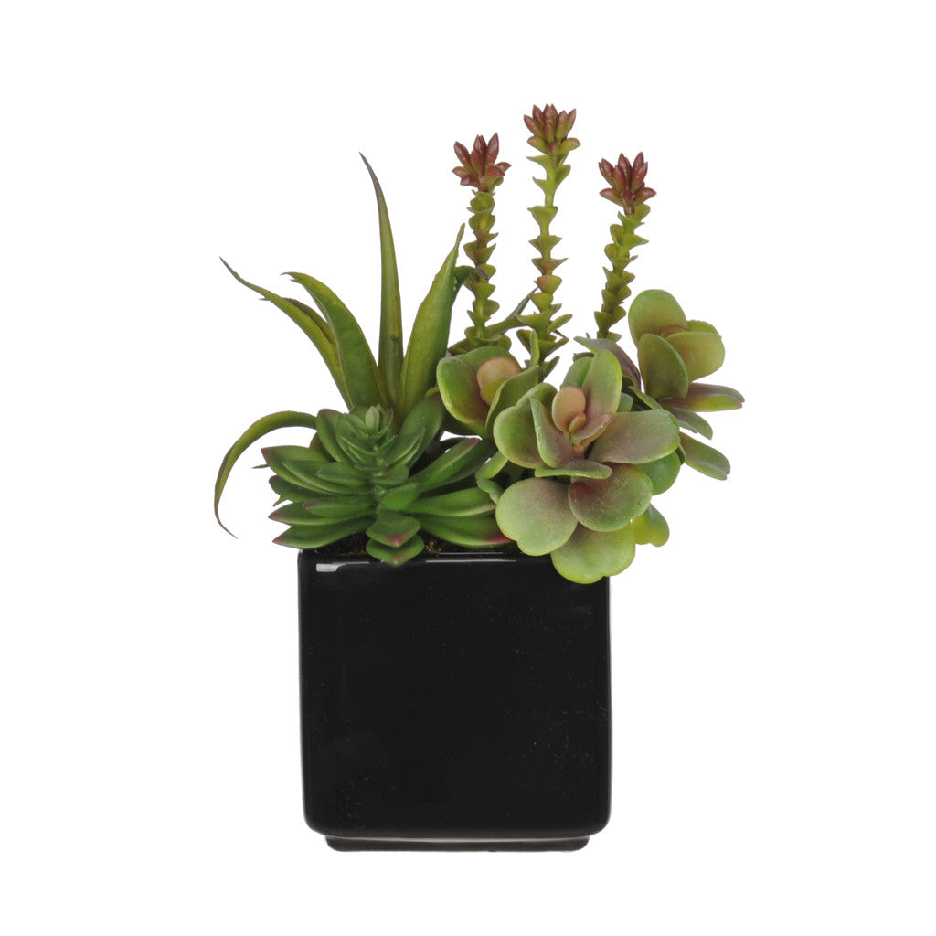 Artificial Succulent Garden In Cube Vase House Of Silk