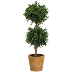 23-inch Tea Leaf Double Ball Topiary in Distressed Terra Cotta Pot House of Silk Flowers®