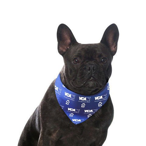 Custom Pet Bandanas