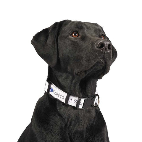 "1"" Full Color Wide Adjustable Pet Collars (Q886711)"