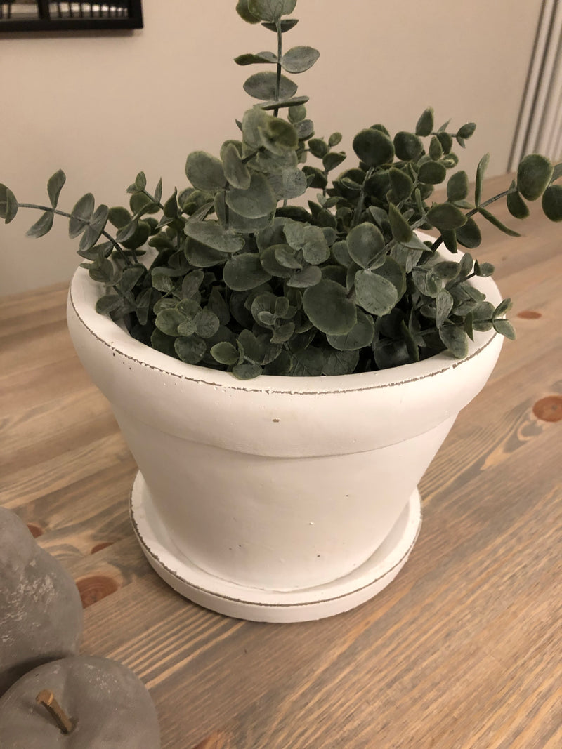 White plant pot with plate